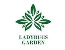 瓢虫花园护肤品