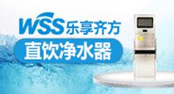 WSS水秘方